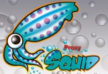 Squid proxy